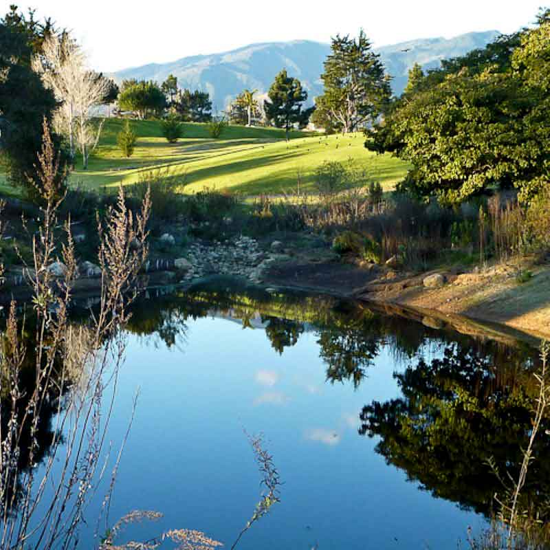 Humedal Artificial en Parques