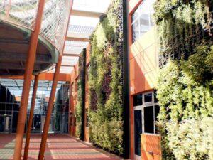 Pared Vegetada Edificio Oficinas
