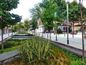 Jardines Lluvia Barrio BonPastor